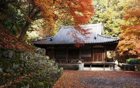 Otagi Nenbutsuji Temple Image