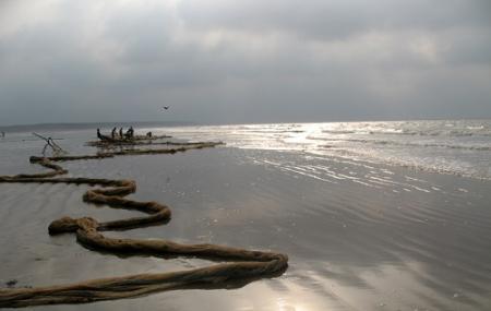 Talsari Beach Image