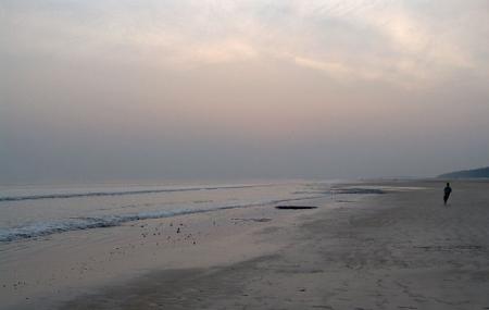 Shankarpur Beach Image