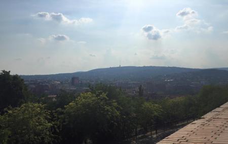 Buda Hills Image