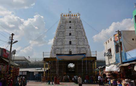 Sri Padmavathi Ammavari Temple Image