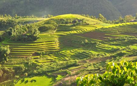 Muong Hoa Valley Image