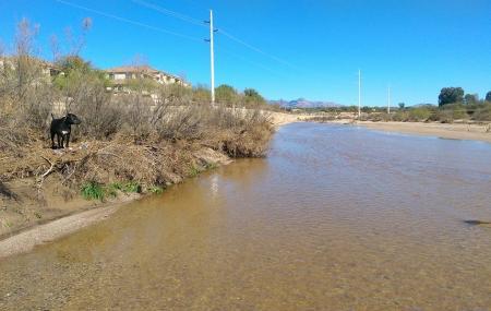 Rillito River Park Image