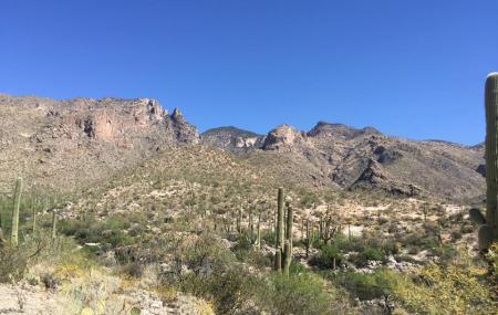Finger Rock Trail Image