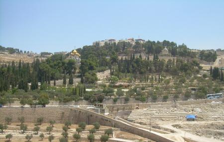 Mount Of Olives Image