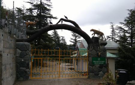 Shimla Water Catchment Sanctuary Image