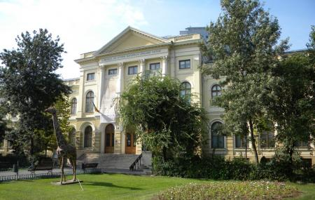Grigore Antipa National Museum Of Natural History Image