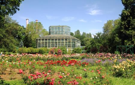Bucharest Botanical Garden Image