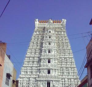 Sri Govindaraja Swamy Temple Image