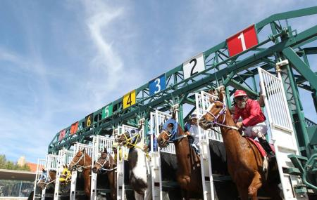 Rillito Park Horse Racetrack Image