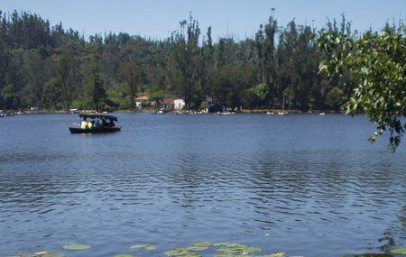 Kodaikanal Lake Image