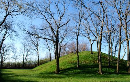 Shrum Mound Image