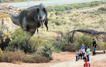Moab Giants Image