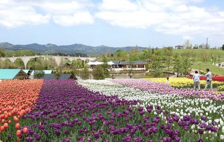 Echigo Hillside Park Image