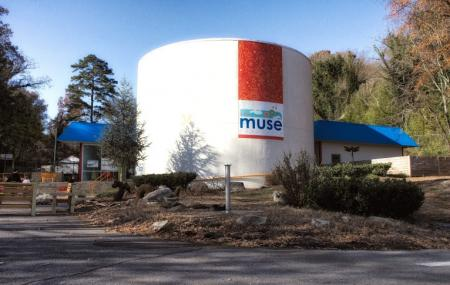 The Muse Knoxville Image