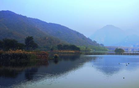 Man Sagar Lake Image