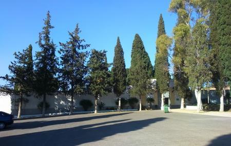 Masonic Cemetery Image