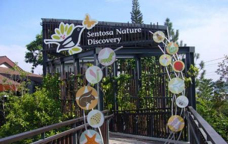 Sentosa Nature Discovery Image