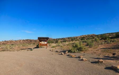 Copper Ridge Dinosaur Trackways Image