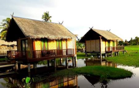 Laman Padi Langkawi Image
