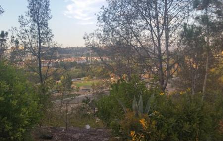 Presidio Park Image
