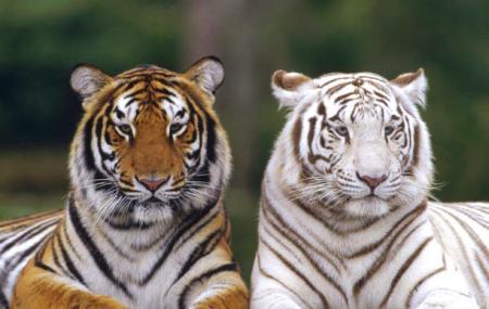 National Zoological Gardens Of Sri Lanka Image