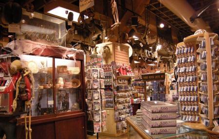 Ye Olde Curiosity Shop Image