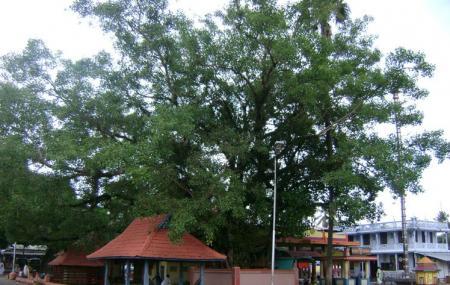 Kanichukulangara Devi Temple Image