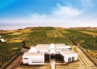 Vassaltis Vineyards Image
