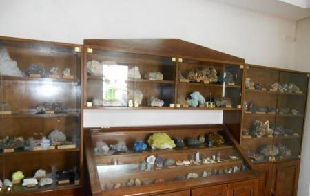 Museum Of Minerals And Fossils Image