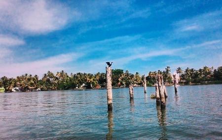 Kayamkulam Lake Image