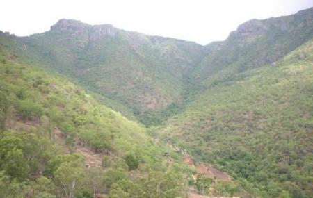 Bison Valley Image