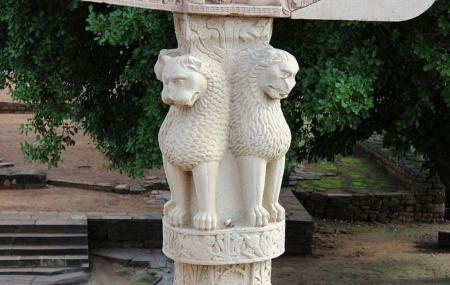 Ashoka Pillar Image