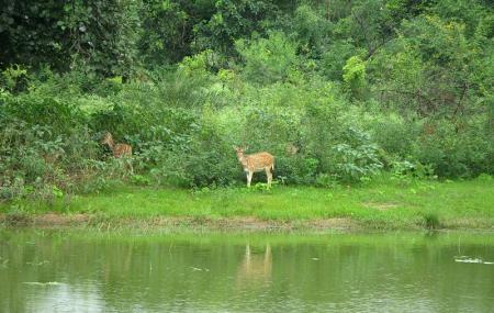 Van Vihar National Park Image