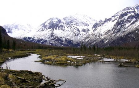 Eagle River Nature Center Image
