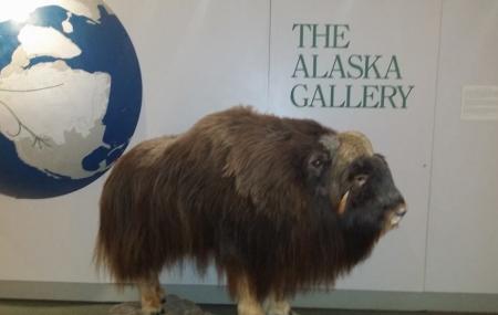 Alaska Public Lands Information Center Image