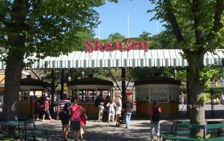 Skansen Image