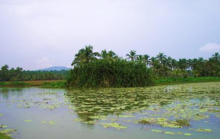Vellayani Lake Image