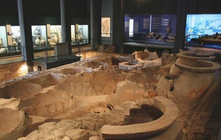 Musee Des Docks Romains Image