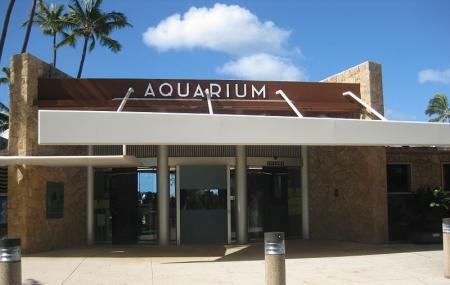 Waikiki Aquarium Image