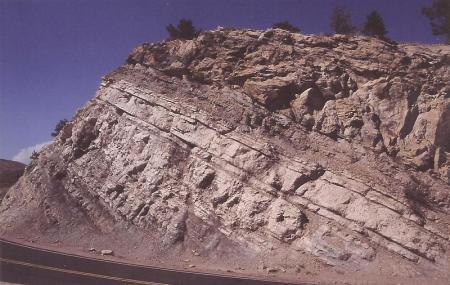 Dinosaur Ridge Image