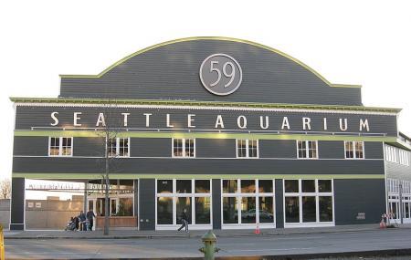 Seattle Aquarium Image