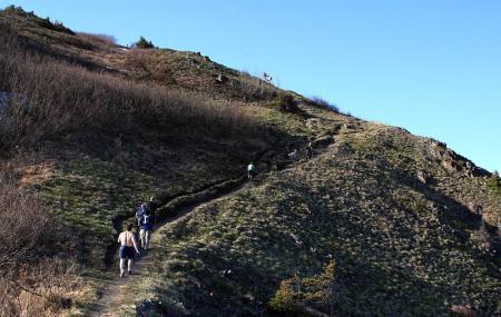 Bird Ridge Trailhead Image