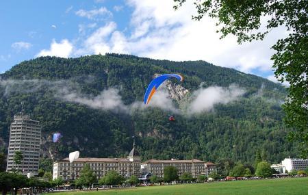 Paragliding Interlaken Image