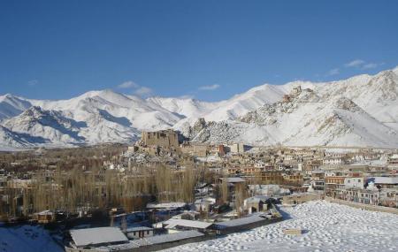 Ladakh Arts And Media Organisation Image