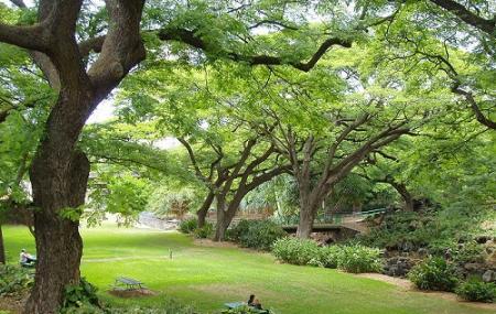 Liliuokalani Botanical Garden Image
