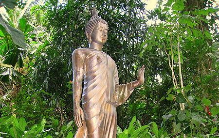 Lyon Arboretum Image