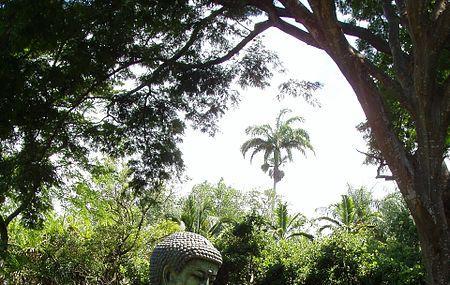 Foster Botanical Garden Image