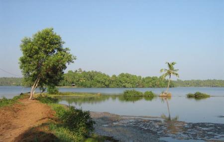 Ponnumthuruthu Island Image