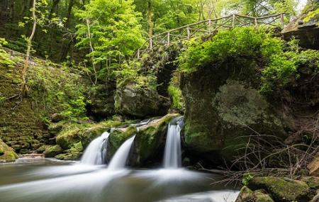 Mullerthal Trail Image